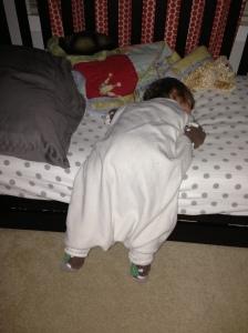 Sleeping Laine