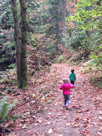 Running hikers.
